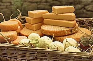 Basket of Cheese
